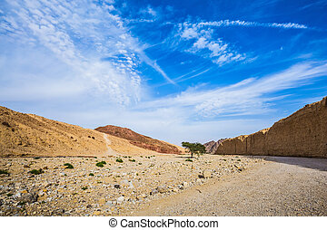 The stone desert in mountains