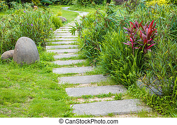 The stone walkway winding its way through a tranquil summer garden