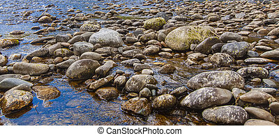 stones in a mountain river. Wild nature. Selective focus