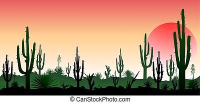The stony desert, the sunset - Sunset in the desert....