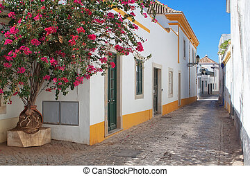 The streets of the old town of Faro. Portugal.