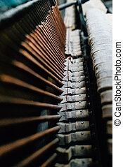 the strings of the old piano