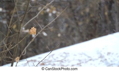 The strong snowfall in the forest, yellow leaf sway in the wind