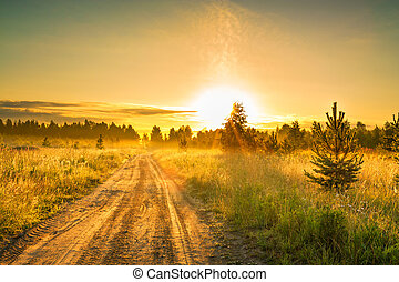 summer rural landscape with sunrise and the road