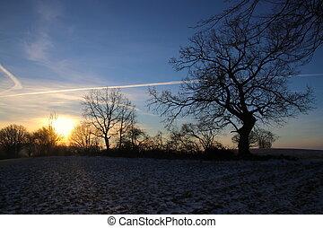 The sun creates morning shadows