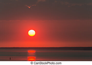 the sun is above the horizon