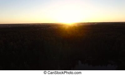 The sun sets over the forest