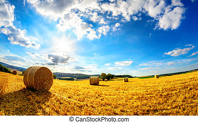 The sun shining upon rural landscape