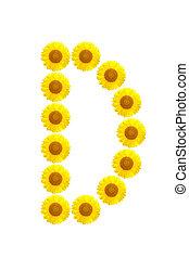 sunflower alphabet D on the white background