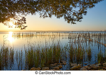 fishing nets on a lake
