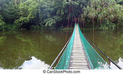 The suspension bridge over the lake at Rainforest Discovery...