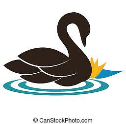 The swan - Beautiful swan illustration swimming near the...