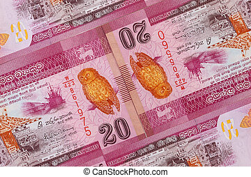The symmetrical composition of Sri Lankan banknotes.