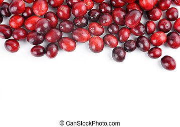 The tasty american cranberries ( Vaccinium macrocarpon ) on ...