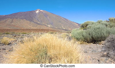 The Teide volcano (Pico del Teide) in highland of Tenerife...