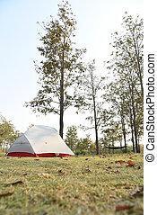 the tent at natural park, Thailand