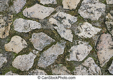 The texture of paving stones with grass.