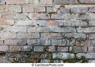 The texture of the old peeling concrete walls with bricks. One can see the bricks. The fallen wall. Closeup