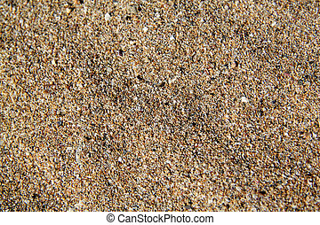 The texture of the yellow sea sand