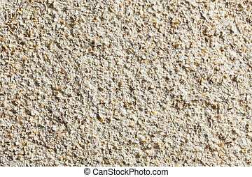 texture of wholemeal flour - the texture of wholemeal flour