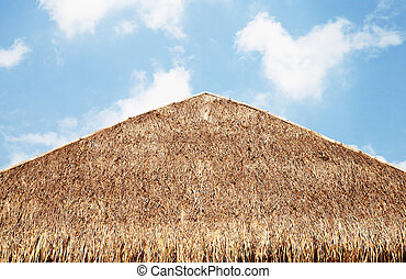 The thatched roof with blue sky