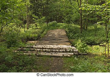 The timbered bridge in wood.