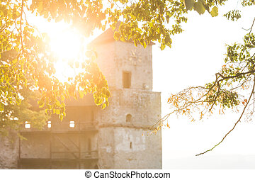 The tower of Trencin castle at sunset behind branches