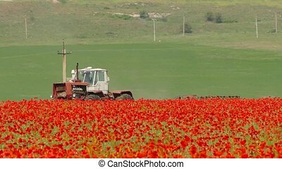 the tractor is driving through the field with a poppy - the...