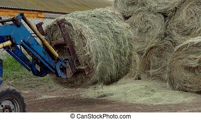 the tractor puts hay in a big stack
