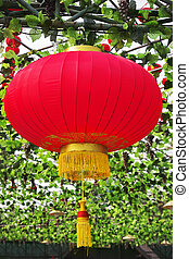 The traditional red lanterns decorating the Chinese park
