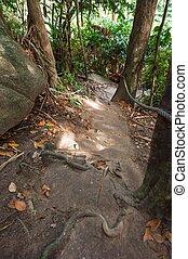 the trail path to top of mountain, Similan Thailand