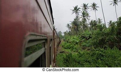 the train is traveling around Sri Lanka