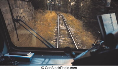 The train travels through the autumn forest.