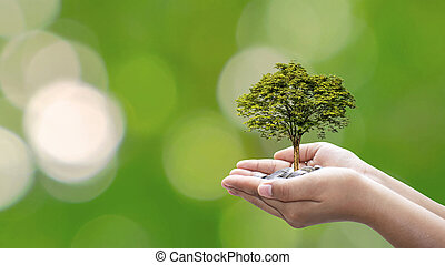 The tree is planted on a coin in the hands of humans with a natural green background, blurring the concept of plant growth and financial growth.