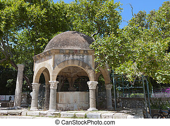 Kos island in Greece - The tree of Hippocrates at Kos island...