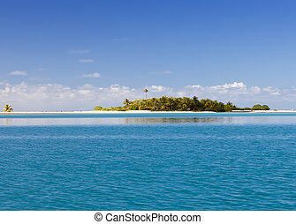 The tropical island with palm trees in the sea