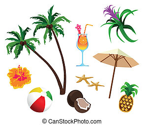 Tropical themed objects isolated on white background