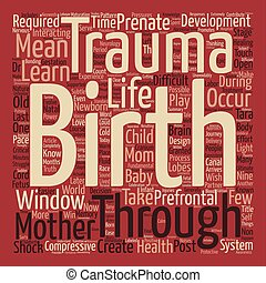 The Truth About Birth Trauma Every Mother Should Know text...
