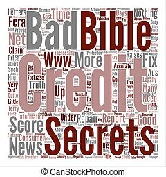 The TRUTH About Credit Repair Word Cloud Concept Text Background