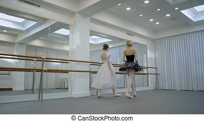 The two ballerinas are coming into the big ballet class and stand near the barre in front of the mirror.