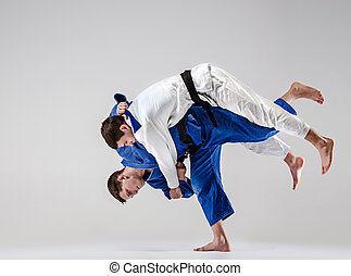 The two judokas fighters fighting men on gray studio...