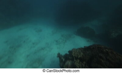 The underwater and a rusty chain - A hand held high angle...