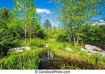 The United States Botanic Garden in Washington, DC.