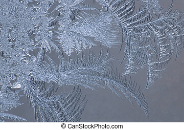the unusual frost on a winter window