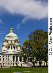 The US Capitol building in Washington, DC