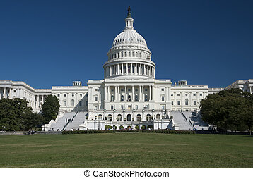 The US Capitol in Washington D.C.