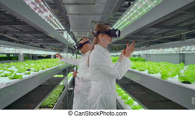 The use of virtual reality glasses in a modern farm scientists lead the process of genetic modification of plants.
