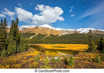 The valley in Rocky Mountains