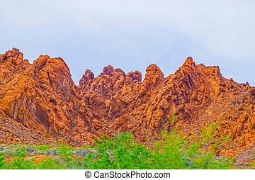 The Valley of Fire State Park, USA. - Valley of Fire State ...