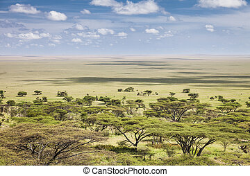 Serengeti - The vast plains of the Serengeti, Tanzania,...